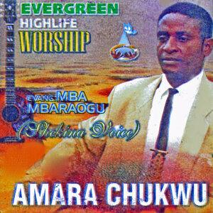 Evang. Mba Mbaraogu (Shekina Voice) 歌手頭像
