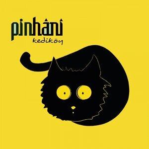Pinhani 歌手頭像