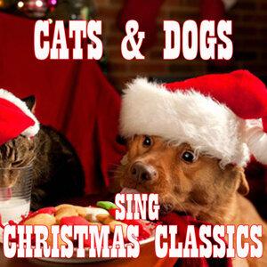 Singing Pets 歌手頭像