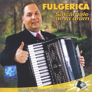 Fulgerica 歌手頭像