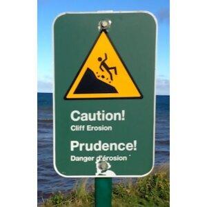 Prudence 歌手頭像
