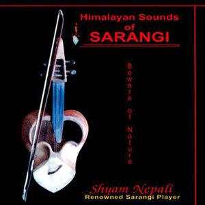 Shyam Nepali 歌手頭像