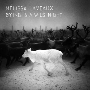 Melissa Laveaux 歌手頭像