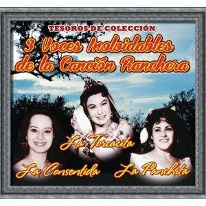 """Matilde Sánchez """"la Torcacita"""" - la Panchita - la Consentida 歌手頭像"""