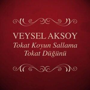 Veysel Aksoy 歌手頭像
