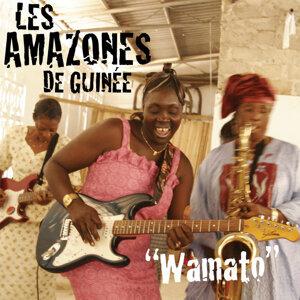 Les Amazones de Guinée 歌手頭像