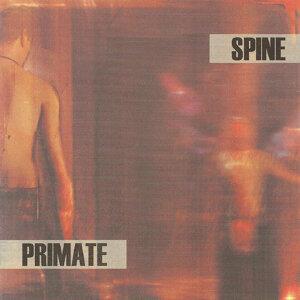 Spine / Primate 歌手頭像
