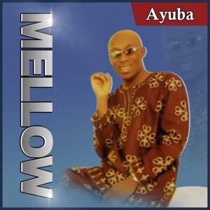 Adewale Ayuba 歌手頭像