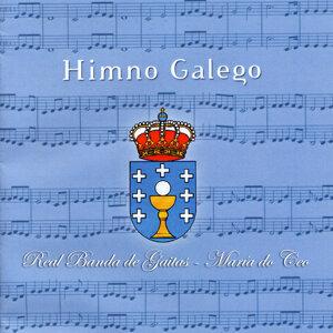 Real Banda de Gaitas de Ourense 歌手頭像