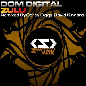 Dom Digital 歌手頭像