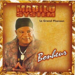 Madilu System 歌手頭像
