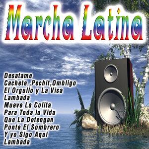 Suspiros Latinos 歌手頭像