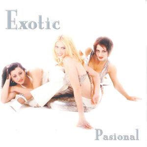 Exotic 歌手頭像