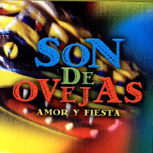 Son De Ovejas 歌手頭像