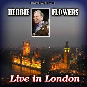 Herbie Flowers 歌手頭像