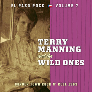 Terry Manning and The Wild Ones 歌手頭像