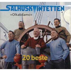 Salhuskvintetten 歌手頭像