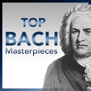 DREANDAS Classical Session Players 歌手頭像