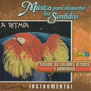 A Ritmia 歌手頭像