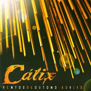 Calixto Ochoa 歌手頭像