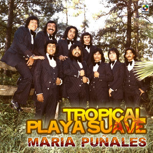 Tropical Playa Suave 歌手頭像