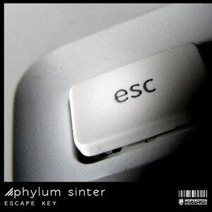 Phylum Sinter 歌手頭像