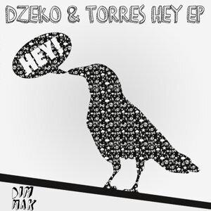 Dzeko & Torres 歌手頭像