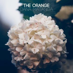 The Orange 歌手頭像