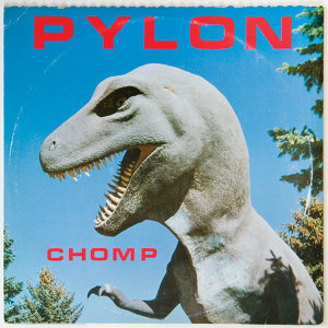 The Pylon 歌手頭像