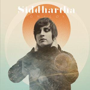 Siddhartha 歌手頭像