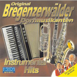 Original Bregenzerwalder Dorfmusikanten 歌手頭像