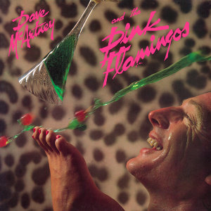 Dave McArtney and The Pink Flamingos 歌手頭像