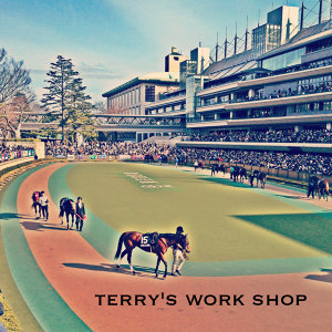 Terry's work shop 歌手頭像