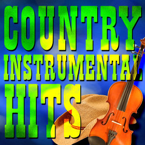#1 Country Instrumental Hits 歌手頭像