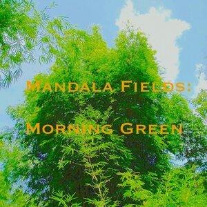 Mandala Fields