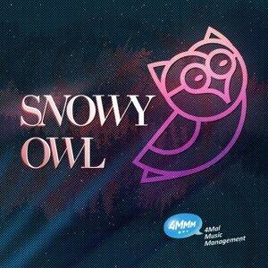 Snowy Owl 歌手頭像
