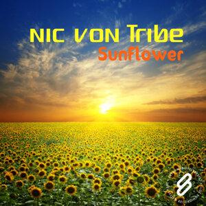Nic Von Tribe 歌手頭像