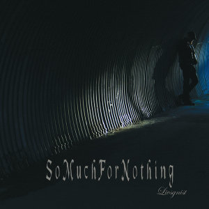 So Much for Nothing 歌手頭像