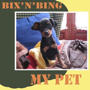Bix 'N' Bing 歌手頭像