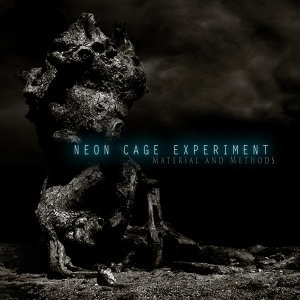Neon Cage Experiment