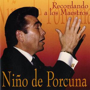 Niño de Porcuna 歌手頭像
