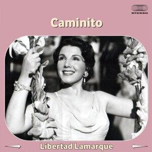 Libertad Lamarque 歌手頭像