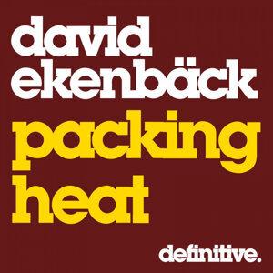 David Ekenback 歌手頭像