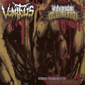 Inhuman Dissiliency / Vomitus 歌手頭像