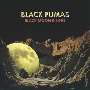 Black Pumas 歌手頭像