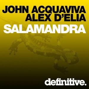 John Acquaviva, Alex D'Elia 歌手頭像