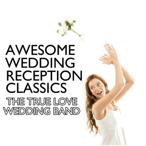 The True Love Wedding Band 歌手頭像