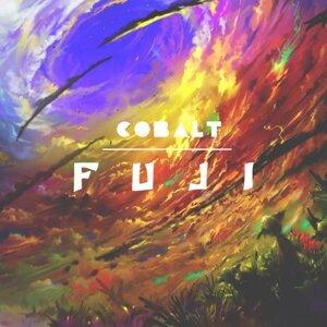 Cobalt 歌手頭像