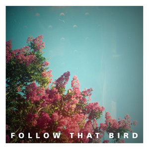 Follow That Bird 歌手頭像