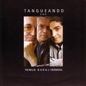 Alfredo Remus/ Bernardo Baraj/ Juanjo Hermida 歌手頭像